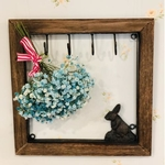 Rabbit in the Frame