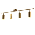 Gold Ceiling Mounted Spotlight