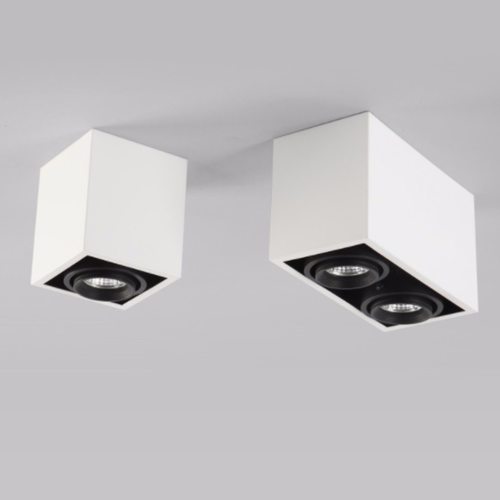 Mounted Box Spot Light