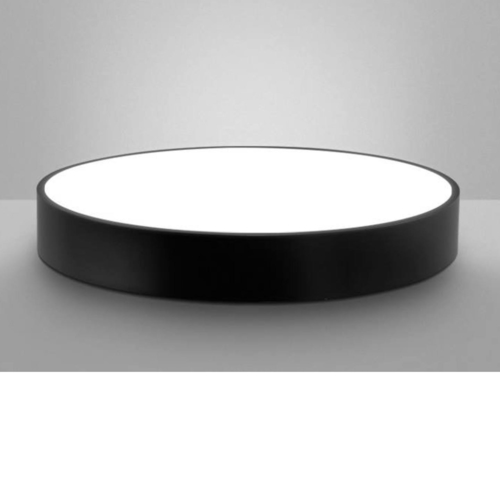 Round Frame Ceiling Light