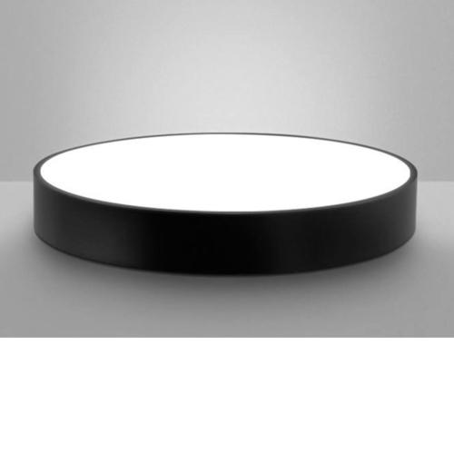 Round Frame Ceiling Light
