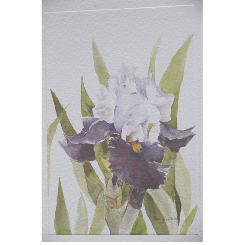 Mixed set of floral cards