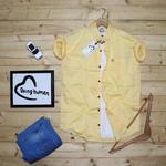 Men's Pure Cotton Shirt