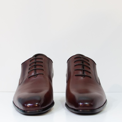 Arvin II in Red Brown