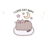 TS_Womens_Pusheen_I_Love_Cat_Naps_Pyjamas_19_99_Print_Flat-617-662.jpg