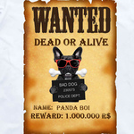 Wanted: Panda Boi