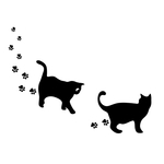 cat t image .jpg