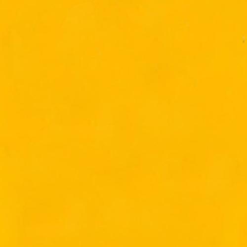 Solid Mustard tee