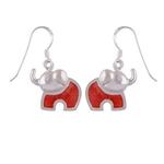 The Appu Silver Earring