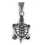 The Turtle Silver Pendant