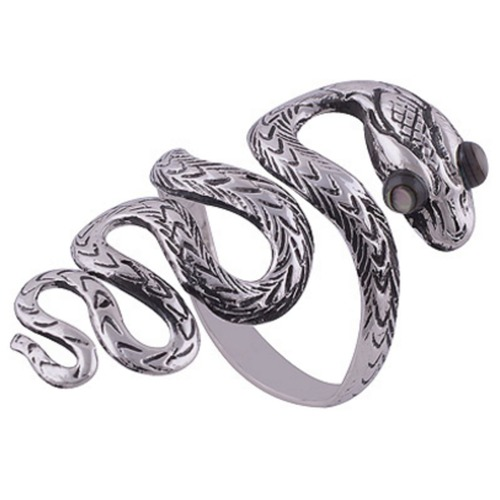 The Mystery Eye Snake Silver Ring