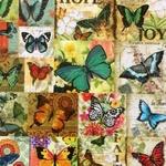 Desi Pop Butterfly Tissue Box