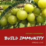 Organic Gooseberry - Only shipping through dunzo till 18thMarch20