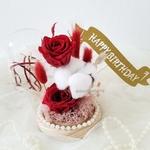 SG56 Special Promo  Everlasting Flower Dome