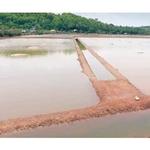 NATURAL SALT (Sea Salt Unprocessed) - ಸಮುದ್ರ ಲವಣ - 1 Kg