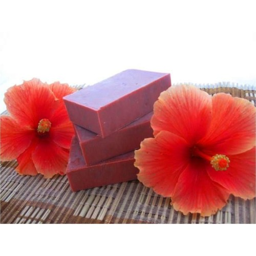 Herbal Hibiscus Shampoo Bar - 100g
