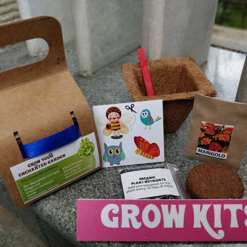 DIY Grow Kit - Big