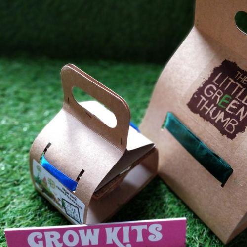 DIY Grow Kit - Small
