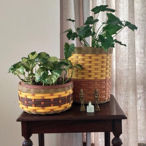 Planters & Baskets