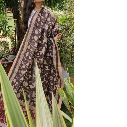 Dupatta Kalamkari - Vines in Motion