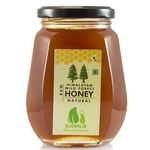 Himalayan Wild Forest Honey Organic