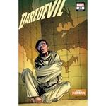 DAREDEVIL #29 PACHECO REBORN VAR