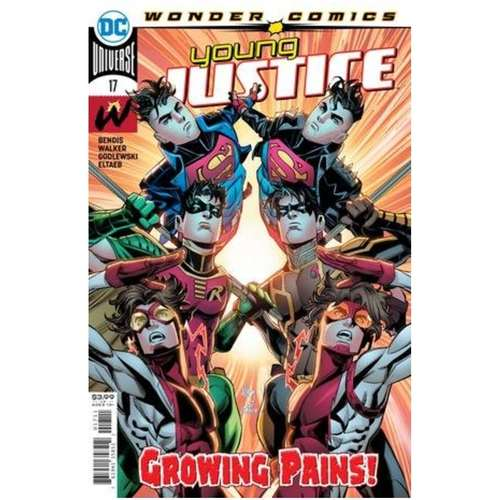 YOUNG JUSTICE #17 CVR A JOHN TIMMS
