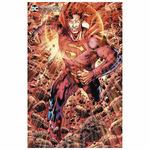 SUPERMAN 20 CARD STOCK BRYAN HITCH VAR ED