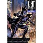 CATWOMAN 80TH ANNIV 100 PAGE SUPER SPECT #1 2000S JIM LEE VA