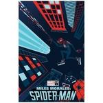 MILES MORALES SPIDER-MAN #25 VEREGGE VAR