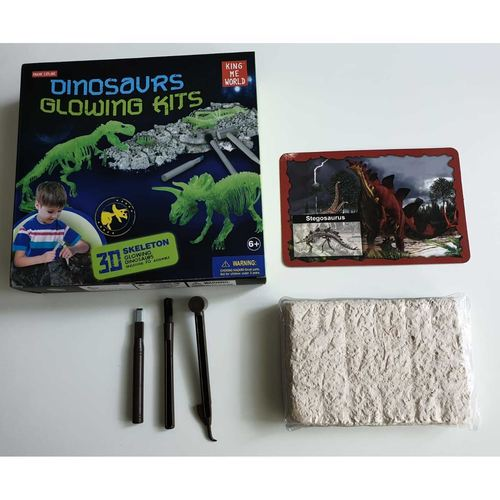 Play N Learn Glow In The Dark Dinosaur Excavation Kit - T-Rex