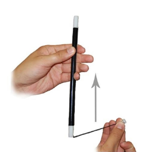 Party Perfect Gift Popular Play N Learn Magic Rising Wand