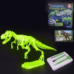 Play N Learn Glow In The Dark Dinosaur Excavation Kit - T-Rex
