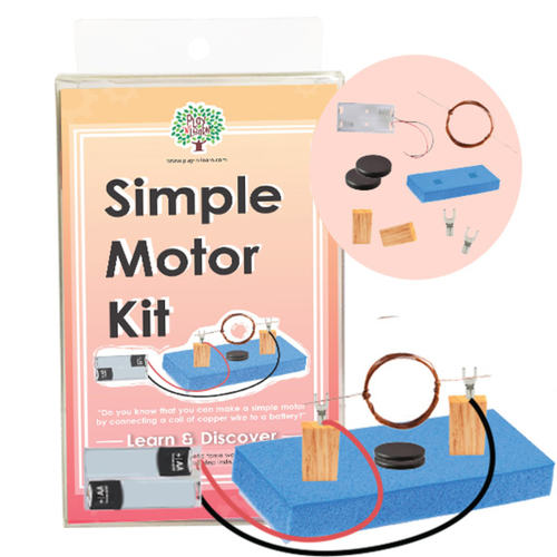 Play N Learn STEM Simple Motor Kit