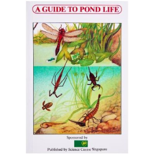 Play N Learn Science Guidebook - Pond Life