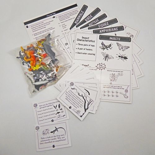Play N Learn Science Kit - Animal Classification