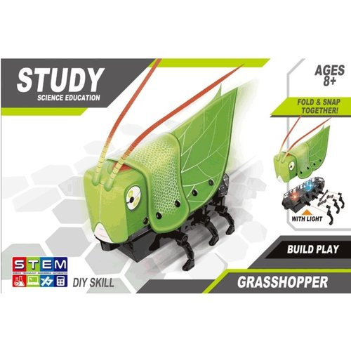 STEM Battery Operated Self Assembly Robot Grasshopper Toy Gift for Kids