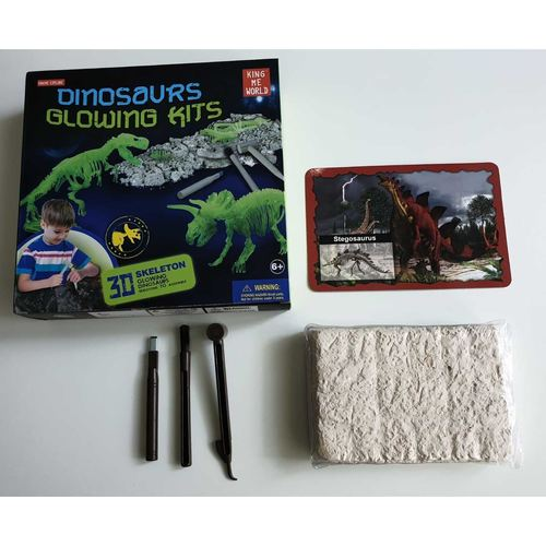 Play N Learn Glow In The Dark Dinosaur Excavation Kit - Stegosaurus