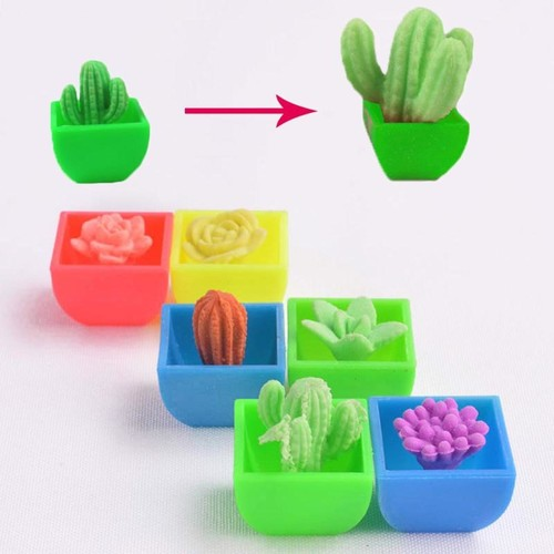 Play N Learn Science Toy Cactus  4 in 1