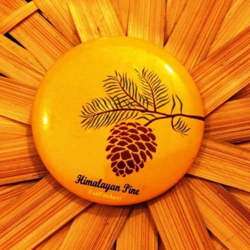 Himalayan Pine Fridge Magnet