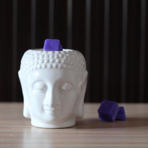 AuraDecor Aroma Wax Melts (lavender)