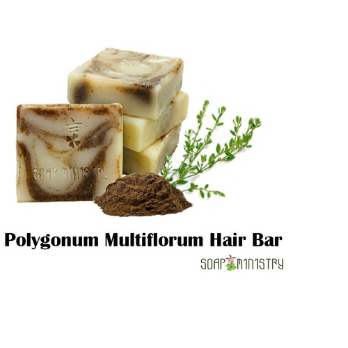 Polygonum Multiflorum Hair Bar
