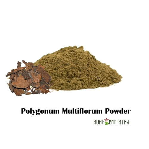 Polygonum Multiflorum Powder 50g