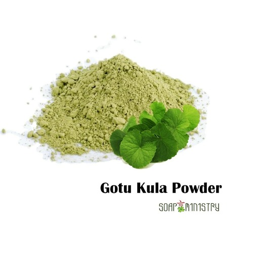 Gotu Kola Powder 250g