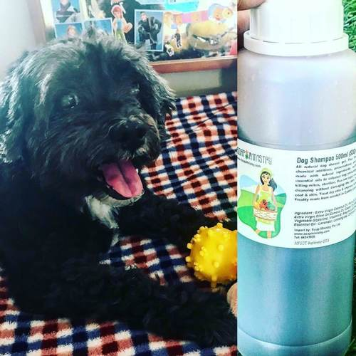 Dog Shampoo 500ml