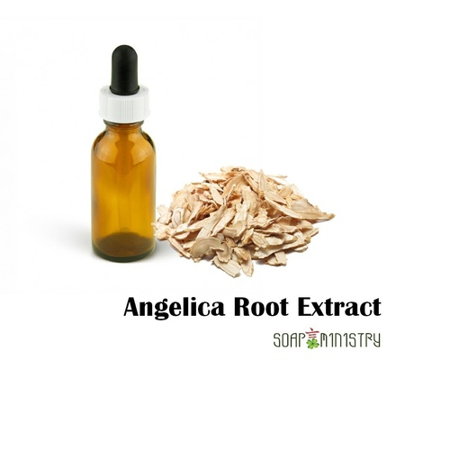 Angelica Root Extract 100g