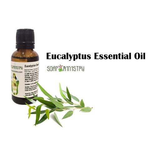 Eucalyptus Essential Oil 1L