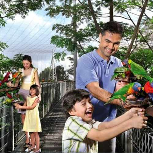 Jurong Bird Park (Adult)