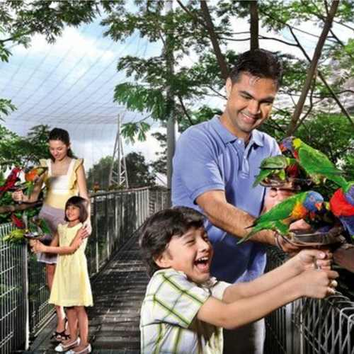 Jurong Bird Park (Child)
