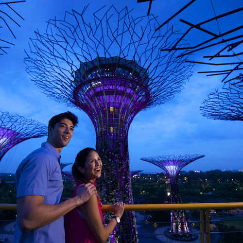 Gardens By The Bay (Adult)